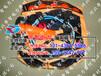 永州救生抛投器厂家行业领先/SQS-230型救生抛投器/帝智牌