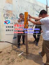 多功能打桩机/打桩机价格/河北帝智专业防汛物资厂家图片