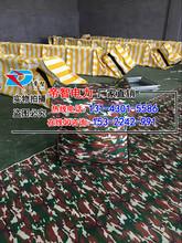 防汛首选-注水式折叠堵水墙/移动储水堵水墙图片