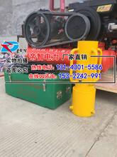 惠州厂家销售小型植桩机/打桩机首选帝智品牌图片
