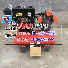 帝智防汛-高效率小型打桩机