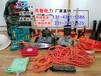 撫州廠家直銷救援搶險組合工具包