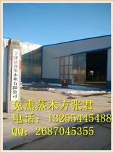 免熏蒸石家庄免熏蒸木方LVL最新产品价格-LVL13-25-5445488图片