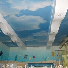 供应洗浴吊顶材料-山东洗浴中心吊顶-软膜天花-乐创软膜装饰