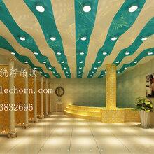 安徽洗浴吊顶宿州洗浴中心吊顶材料-乐创软膜天花