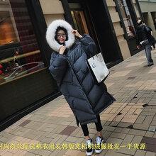 哪里有保暖女装棉衣天津河东便宜的女装棉衣批发秋冬时尚棉衣批发冬季爆版棉衣批发