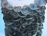 黑木耳菌种雪梅元宝耳半筋