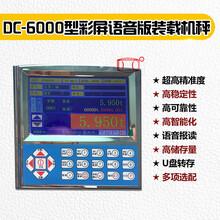 DC6000型彩屏语音报读装载机秤东营装载机电子秤图片