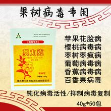 櫻桃(tao)樹病毒病防治(zhi)用藥(yao)果樹病毒病圖片