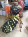主題玻璃鋼雕塑、玻璃鋼昆蟲造型雕塑擺件