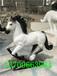 茂名玻璃鋼動物雕塑定做、玻璃鋼動物雕塑價格