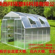 甘肃8mm10mmpc阳光板厂家价格低pc板温室大棚生态餐厅蔬菜花卉棚专用图片