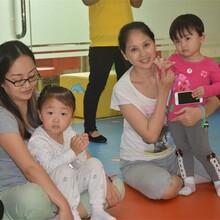 龙华幼少儿托管班0岁到6岁早教培训中心