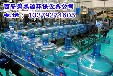 净化水设备