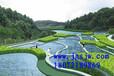 枣庄园林种植东营园林种植烟台园林种植潍坊园林种植