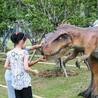 泰安仿真恐龙租赁山东恐龙出租厂家