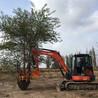三一75鉤機改裝挖樹機苗木清地帶土球移樹機沙土地起苗起樹機