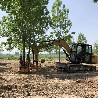 綠化樹快速挖樹機10公分樹木起樹機四瓣式液壓移樹機