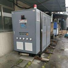 江苏省生物质链条导热油锅炉图片