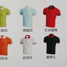 广州班服广告衫文化衫工作服订做个性翻领T恤图片