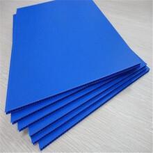 东莞正美厂家定做pp中空板塑料万通板塑料片材规格任意优惠图片
