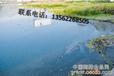 青島處理廢油、燃料油、船舶油持有(危險廢物經營許可證),東營爭峰公司(當天信息)