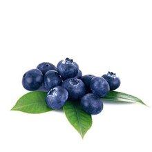 加拿大进口蓝莓酒报关流程
