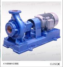 广一泵业直销KTB型制冷空调泵图片