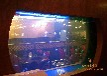 郑州专业定做各种鱼缸海鲜池