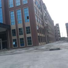 企石镇21000平方米九成新独立式超靓厂房招租