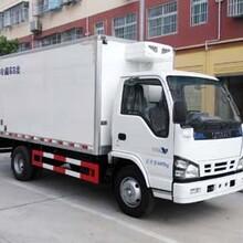 庆铃微型冷藏车(国Ⅴ)图片