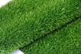 北京哪里有卖仿真草坪批发楼顶假草坪出售
