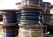 滄州電纜回收