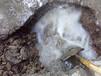 东莞地下管道漏水检测;供水管消防水管漏水检测;水管漏水维修