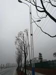 湖南桂阳市道路灯厂家太阳能路灯厂家找浩峰图片