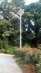 湖南岳阳临湘农村路灯厂家太阳能路灯生产厂家价格图片