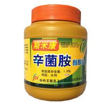 辛菌胺果树涂抹剂苹果梨桃树流胶病愈合剂
