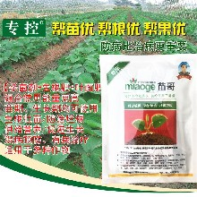草莓育苗好肥料苗哥殺菌劑促進草莓根系生長殺菌劑提高草莓抗病能力圖片