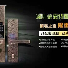德安特指纹锁密码锁刷卡锁智能锁图片