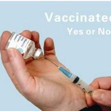 免疫效果抗体检测试剂招商