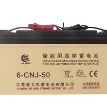 爱力生专业生产太阳能信号灯储能用免维护蓄电池
