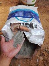 聚合物修補抹面砂漿圖片