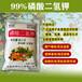 黑龙江水稻专用磷酸二氢钾提高产量施达优磷酸二氢钾易吸收