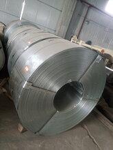 镀锌带钢冷轧卷彩涂卷分条加工600mm以下出口退税