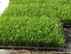 水稻育秧基质水稻育秧基质价格水稻育秧基质厂家中诺