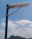 一体太阳能路灯30W