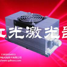 紅光激光器紅光激光管激光器原理激光器分類固體激光器3瓦紅光激光管價格圖片