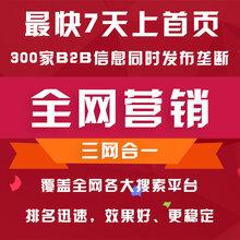 全网排名搜索排名首页关键词排名优化SEO优化广州全网