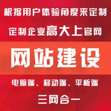 广州网站建设模板网站网站推广建设一条龙