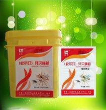 蝇蛆净驱除蚊虫蚊不叮去除苍蝇蚊子图片